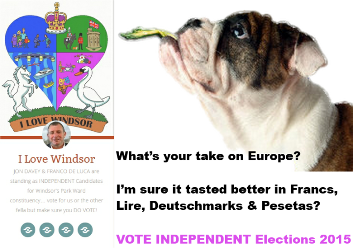 windsor local elections 2015 europe vote independent jon davey and franco de luca