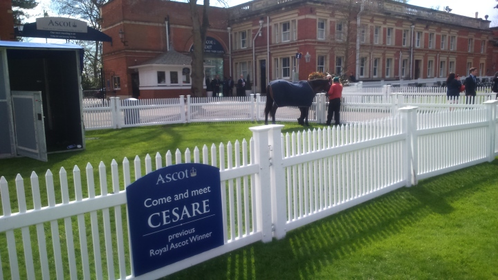 Prince Philip Trust Fund Race Day Cesare