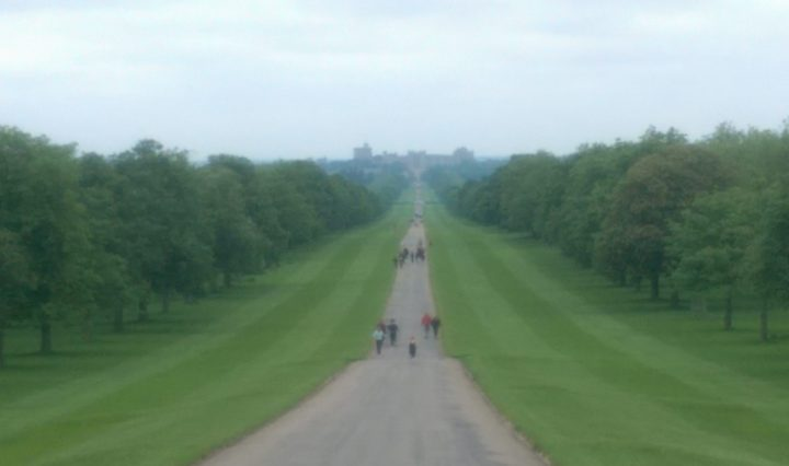 windsor great park long walk windsor castle