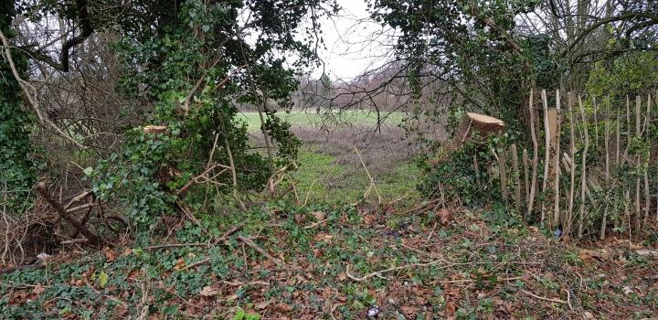sutherland grange dog escape route