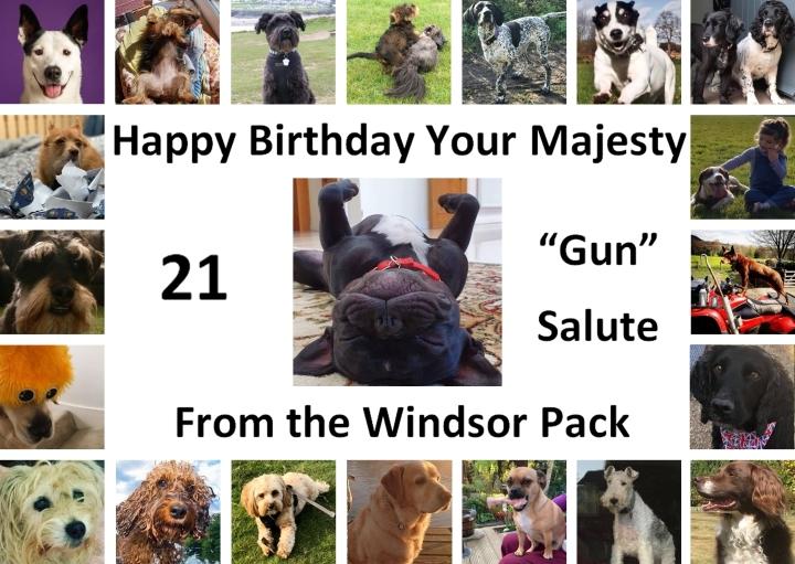 21 gun birthday salute woof woof