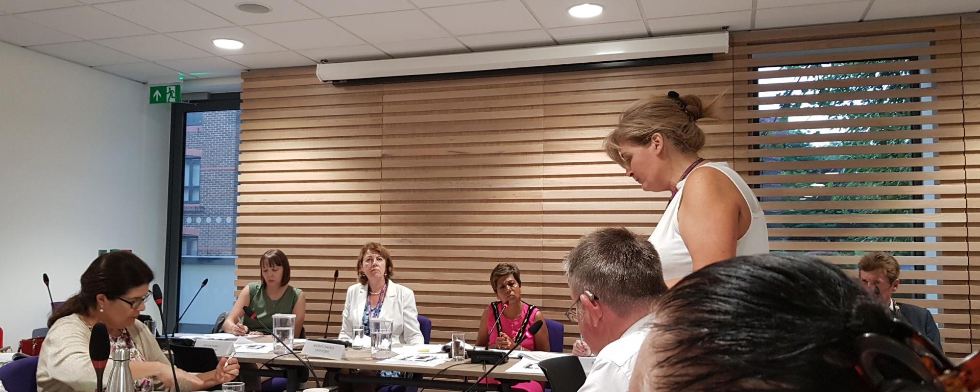Lynne Jones RBWM Council Meeting