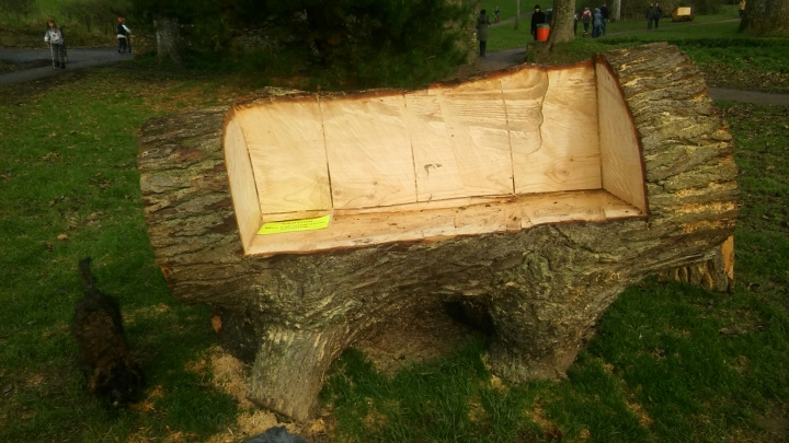 great pine bench