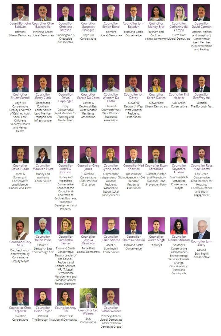 all the RBWM councillors