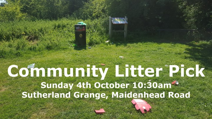 community litter pick sunday 4th october