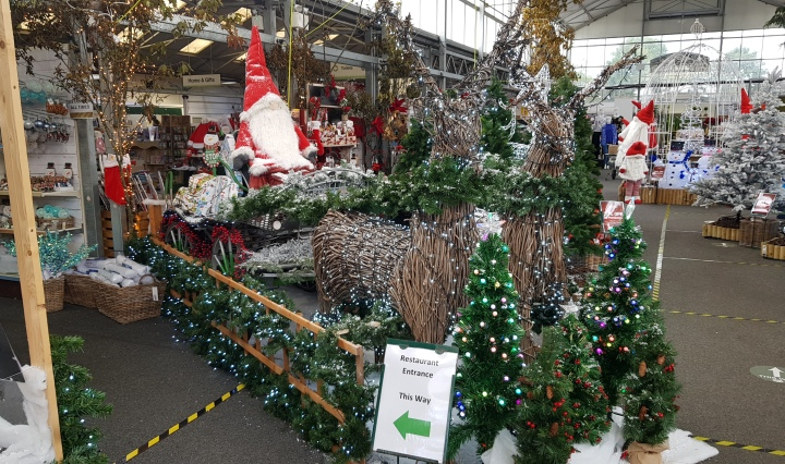 windsor garden centre christmas 2020